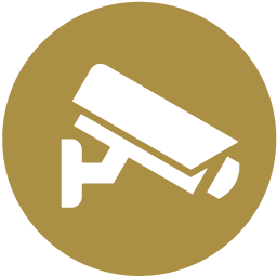 Negligent Security Law Services